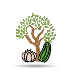 Food nature healthy vegetables vector