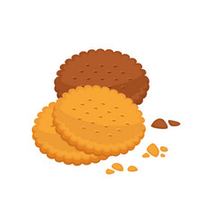 Chocolate and vanilla taste biscuit round shape vector
