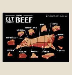 Poster butcher diagram and scheme - cow cut of vector