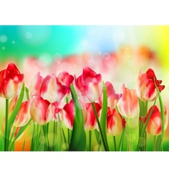 Red tulips field shallow dof eps 10 vector
