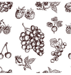 berries hand drawn seamless pattern vector image vector image