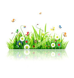 summer green meadow vector image
