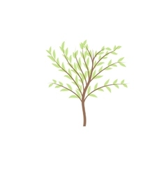 The thin trunk of the tree with leaves logo vector