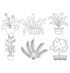 Silhouettes of different shrubs vector