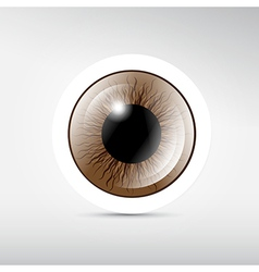 Abstract brown eye on grey background vector image vector image