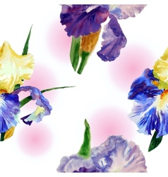 Seamless pattern with color irises1-01 vector image