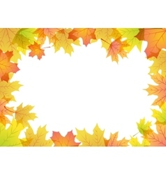 Maple leaves frame vector