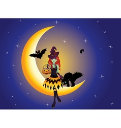 Witch on the moon3 vector