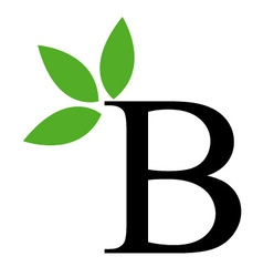 Alphabet B with green leaves vector image vector image