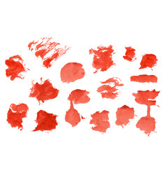 red watercolour set vector image vector image