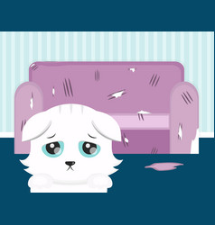 the cat spoiled the sofa sad cat flat vector image vector image