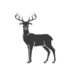Deer side view isolated on white background vector