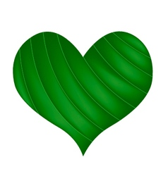 Green banana leaf in a beautiful heart vector