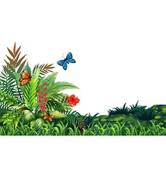 Butterflies and garden vector