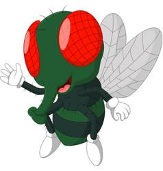 Fly cartoon vector
