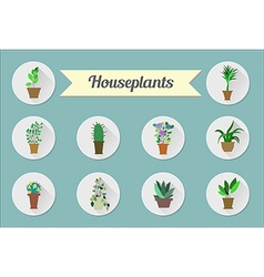 Set of flat icons house plants vector