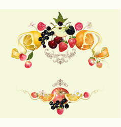 Fruit and berry composition vector image vector image