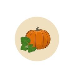 Icon of a ripe orange pumpkin vector