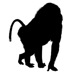 Baboon silhouette vector image