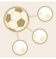 football infographic vector image vector image