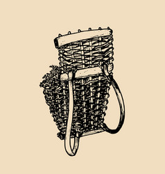 Grape basket vintage drawing vector