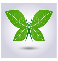 Eco logo green butterfly vector
