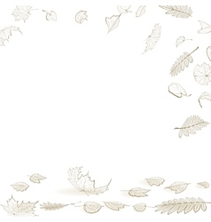 Fall leaf skeletons autumn design template vector image vector image