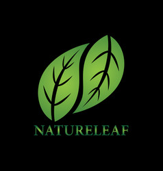 nature leaves logo vector image vector image