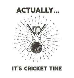 Retro cricket club emblem design cricketing logo vector