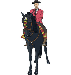Rider on a horse vector
