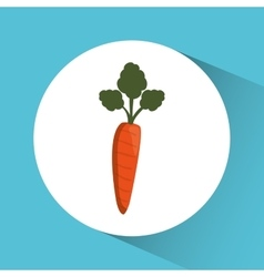Carrot icon nutrition and organic food design vector