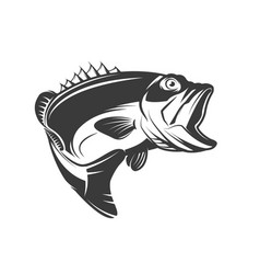 Bass fish icon isolated on white background vector