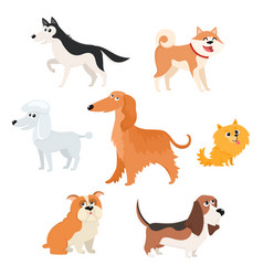 Cute dog characters of various breeds big and vector