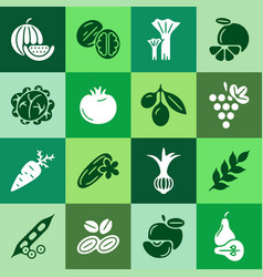 Digital green vegetable square icons set vector