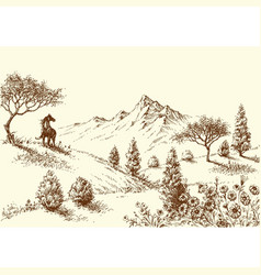 landscape wilderness and horse drawing vector image vector image