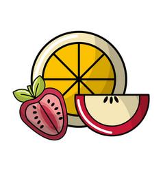 orange strawberry and apple fruit icon vector image