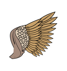 Wing feathers bird freedom fly image vector