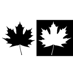 Double Maple Leaf Silhouette vector image