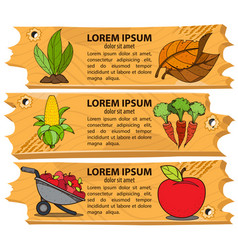 Set banners subsistence farming eco products vector