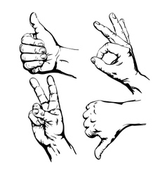 Set of Symbol Hands vector image vector image