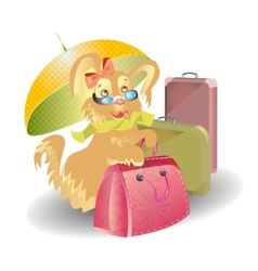 Dog travel with suitcases cartoon vector image