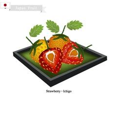 Ichigo or Strawberry A Popular Fruit in Japan vector image vector image