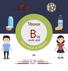 Vitamin b13 infographic vector