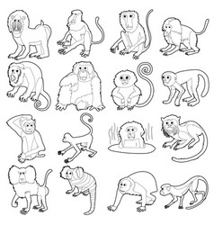 monkeys types icons set outline style vector image vector image