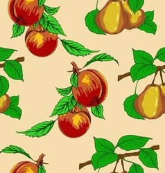peaches and pears vector image