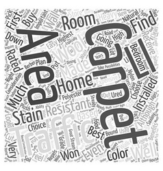 Right carpet for your home word cloud concept vector