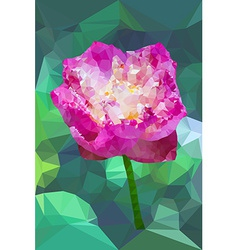 Vivid pink color polygonal lotus flower vector