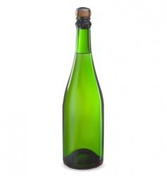 champagne bottl vector image vector image