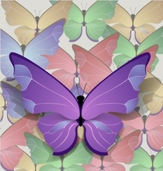 brigt lilac butterfly vector image