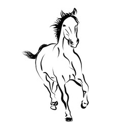 Line sketch of a running horse vector